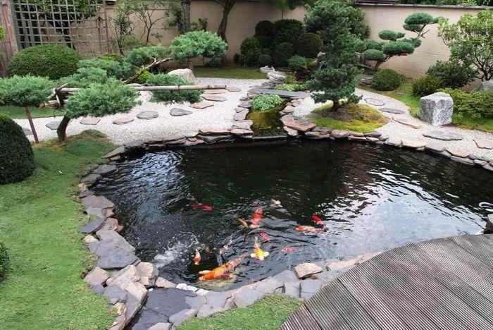 kolam ikan alami